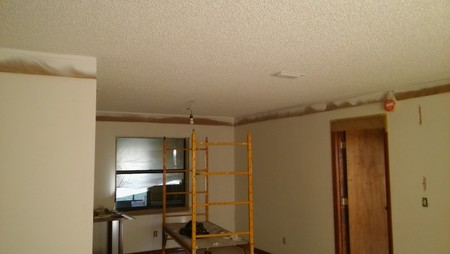 Ceiling Painting in Orlando, FL
